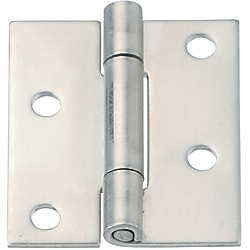 Stainless Steel Hinges/Offset Mounting Holes